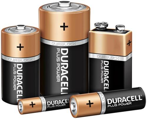 BATTERIJ DURACELL D PLUS POWER PK.2-3