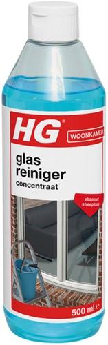 GLASREINIGER HG 500ML 1 Fles
