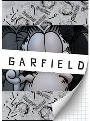 SCHRIFT GARFIELD BOYS A4 RUIT 1 STUK